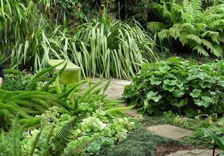 استفاده از رنگ سبز در فضای خانه,دکوراسیون و چیدمان خانه به رنگ سبز